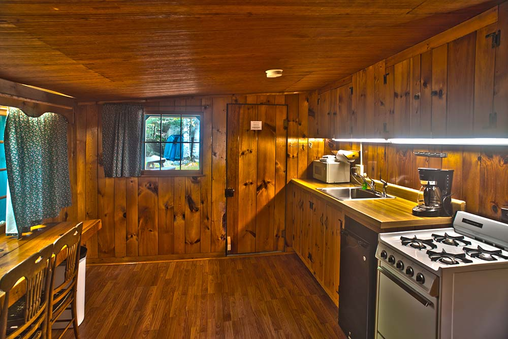 Small kitchen with wood walls